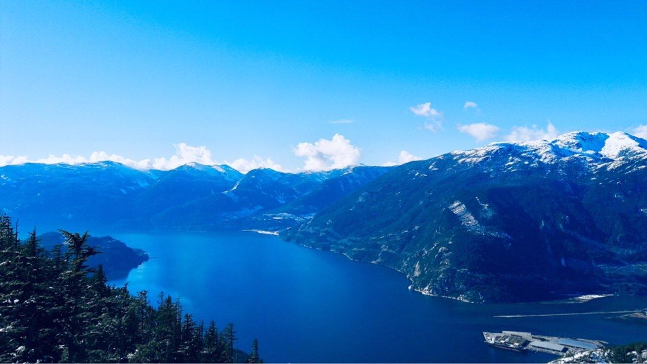 2019新加拿大旅游签证   生物信息采集与护照邮寄攻略