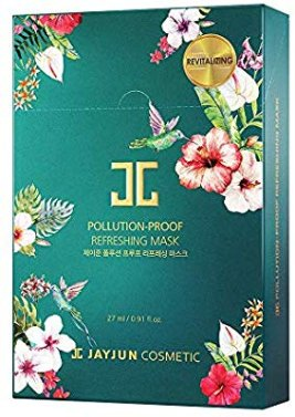Amazon.com : JAYJUN Pollution-Proof Mask 27ml / 0.91 fl.oz. Pack of 10 (Refreshing) : Beauty