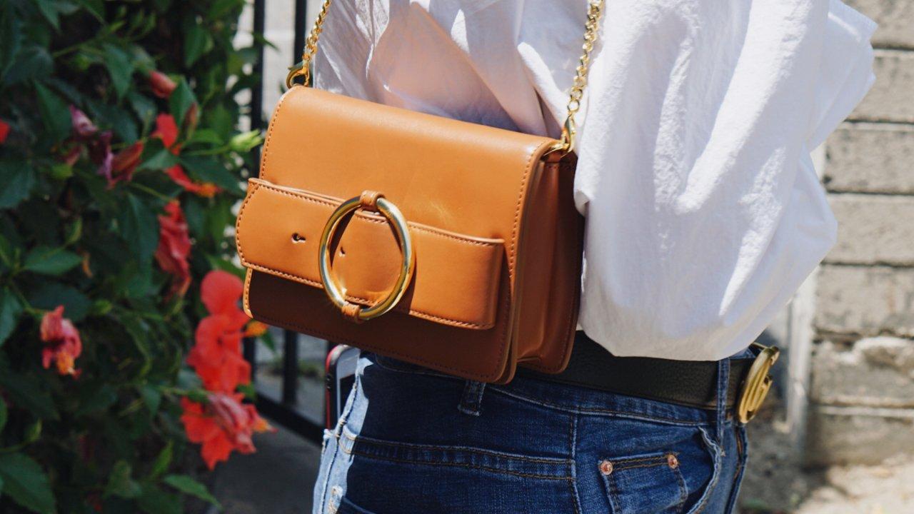 麻雀虽小,五脏俱全   亚裔设计师Parisa Wang腰包测评,总有一款包适合你