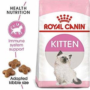 Amazon.com : Royal Canin Feline Health Nutrition Kitten Dry Cat Food, 15-Pound : Dry Pet Food : Gateway