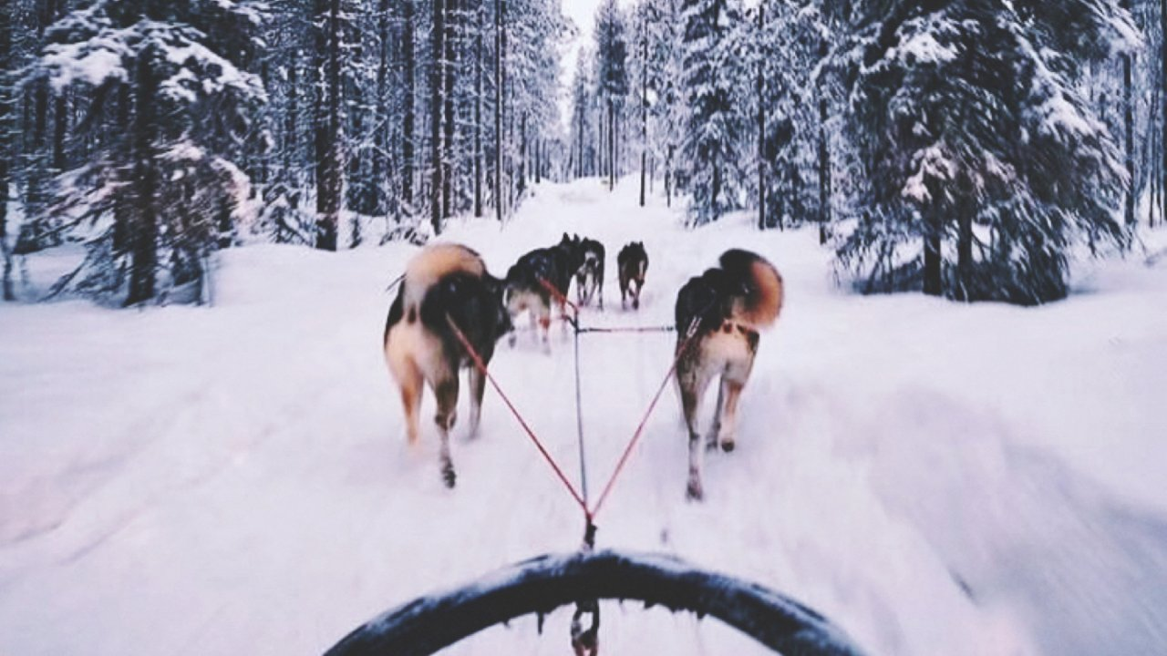芬兰游记 | 雪橇驯鹿、冰湖垂钓、木屋桑拿…