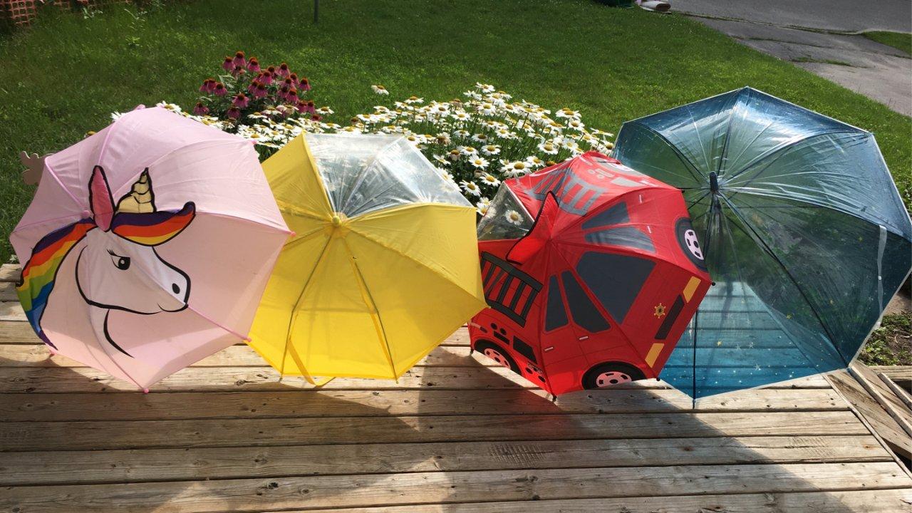 一把伞的领悟