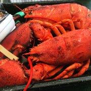 Trenton Bridge Lobster Pound