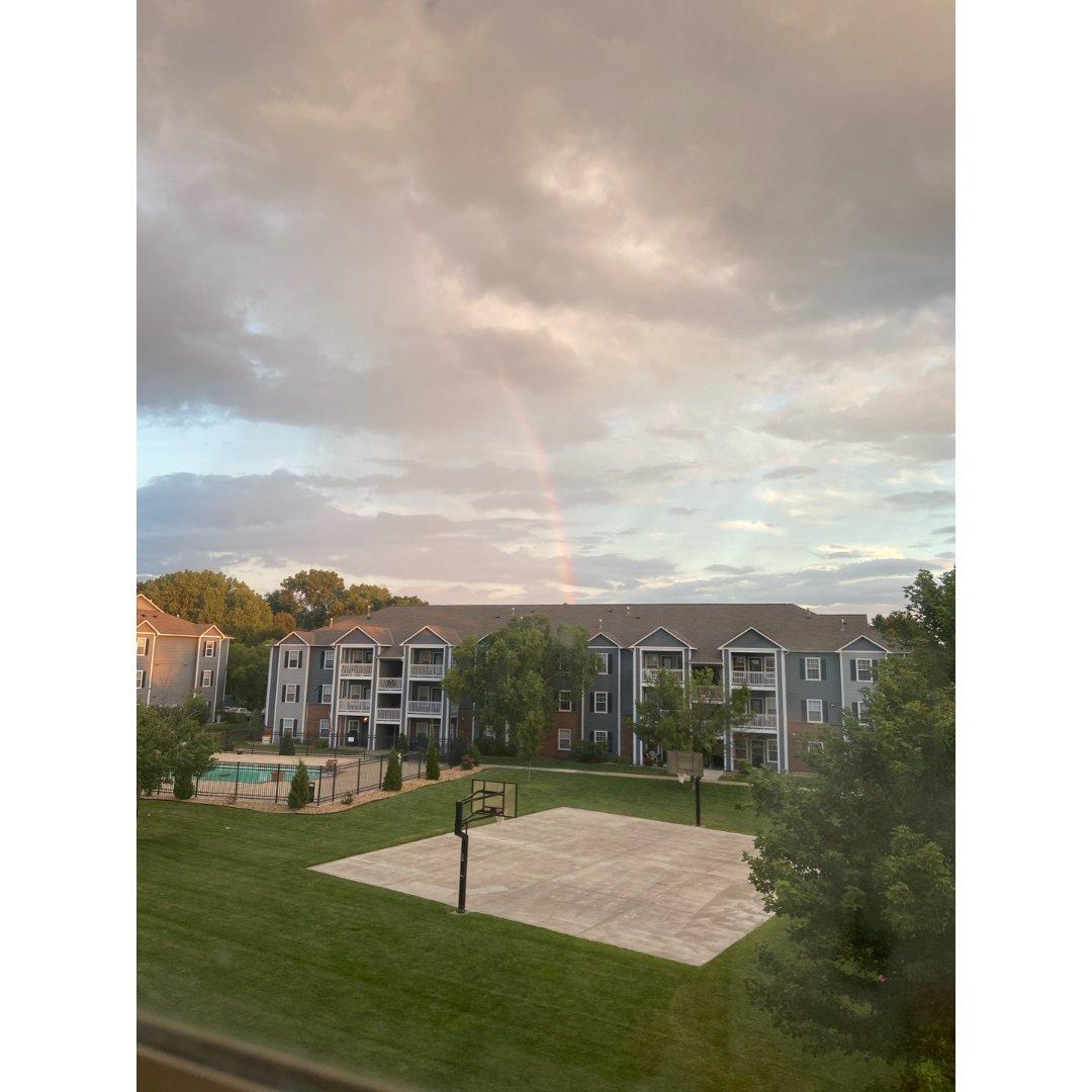 哪里有彩虹告诉我—在这里!