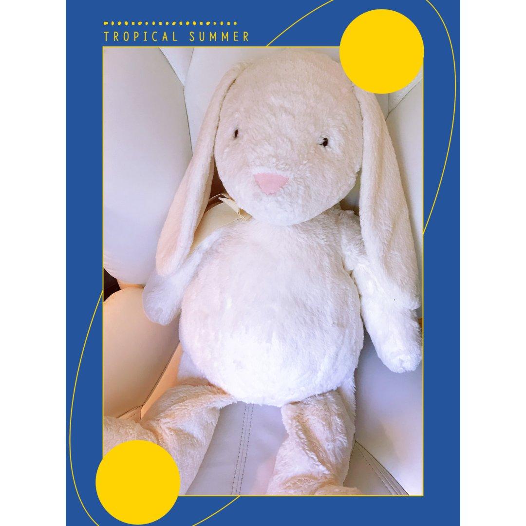 柔软治愈——邦尼兔