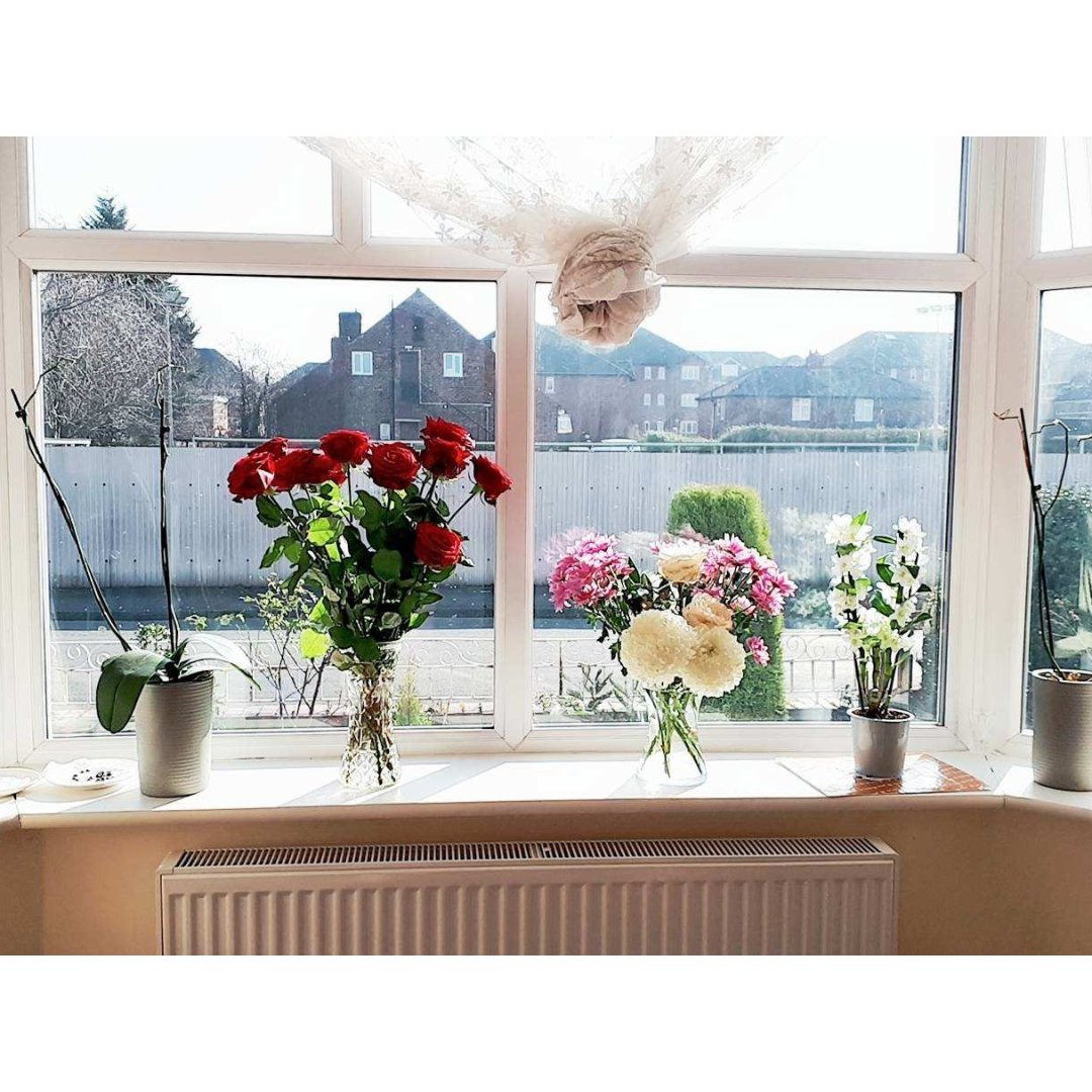 难得的好天气,晒晒家里的花🌼