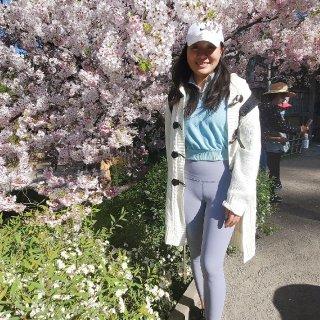 Hakone Estate and Gardens