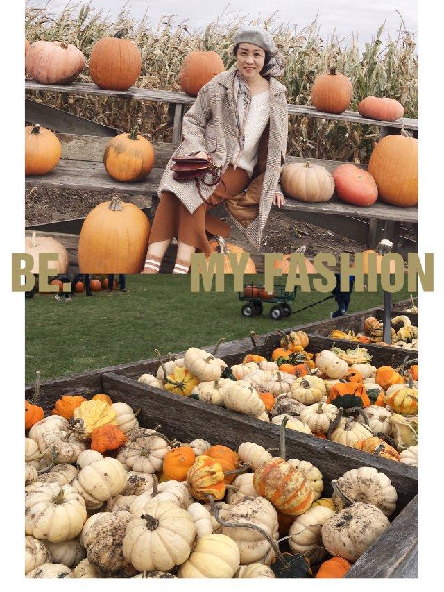 ✨十月南瓜季 |打卡南瓜地✨