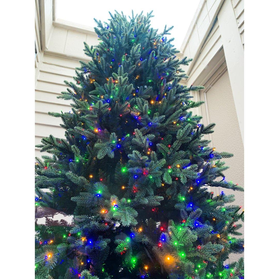 一棵树装扮起浓浓圣诞气氛
