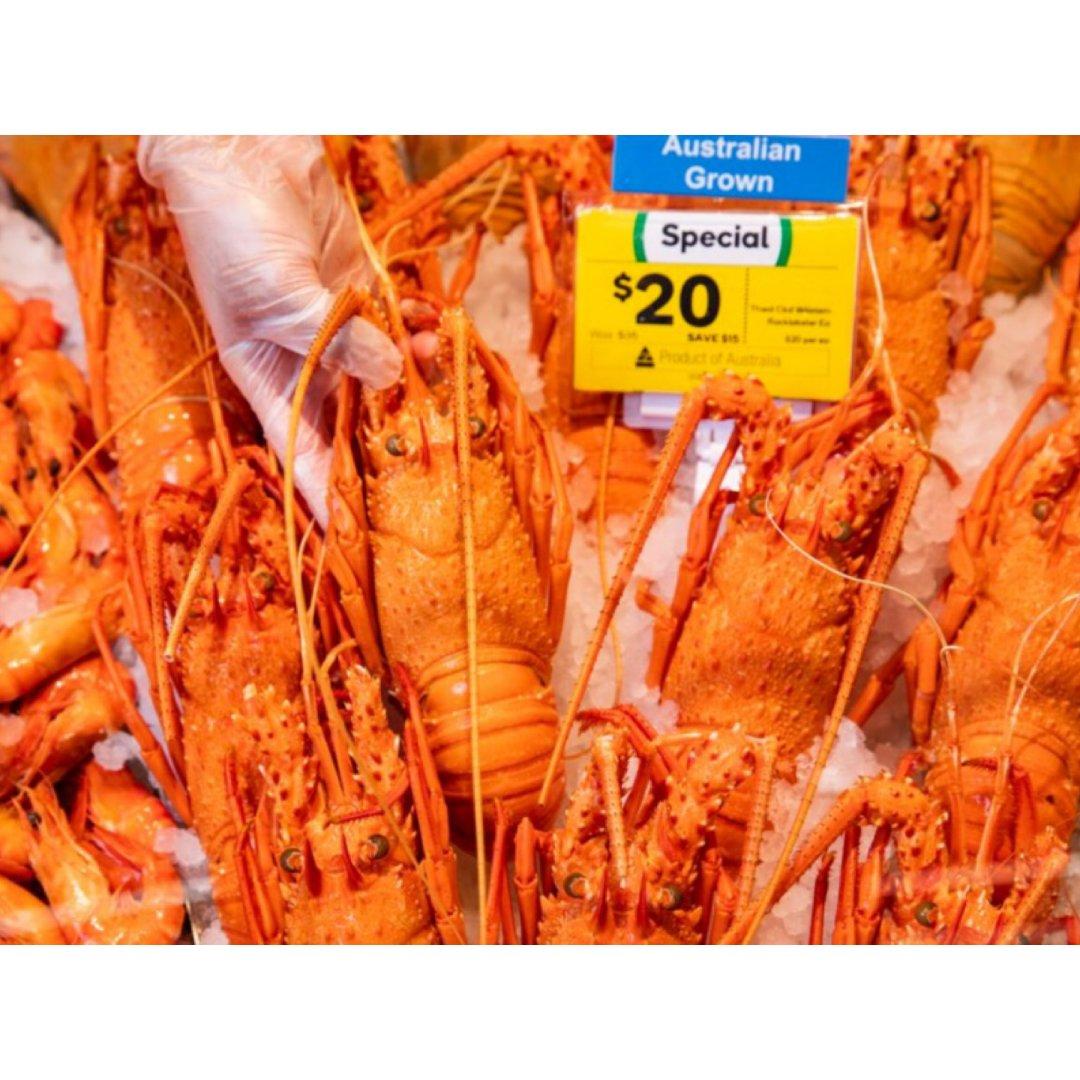 澳洲龙虾$20/只!Coles&wws半...