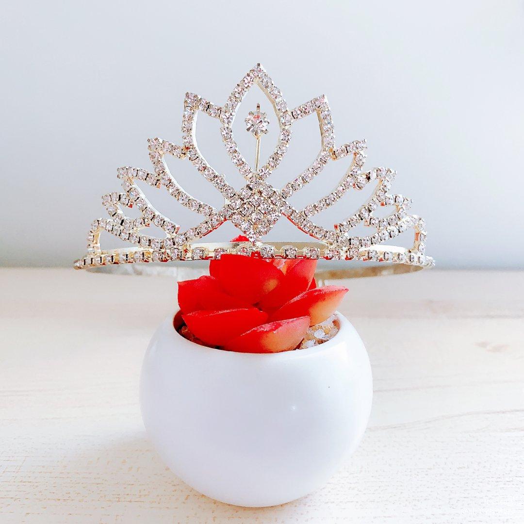 摆摊 每个女生都有一个公主梦👑