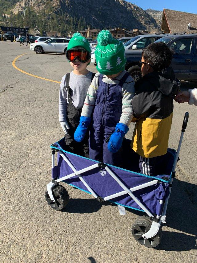 Quest wagon儿童小拖车