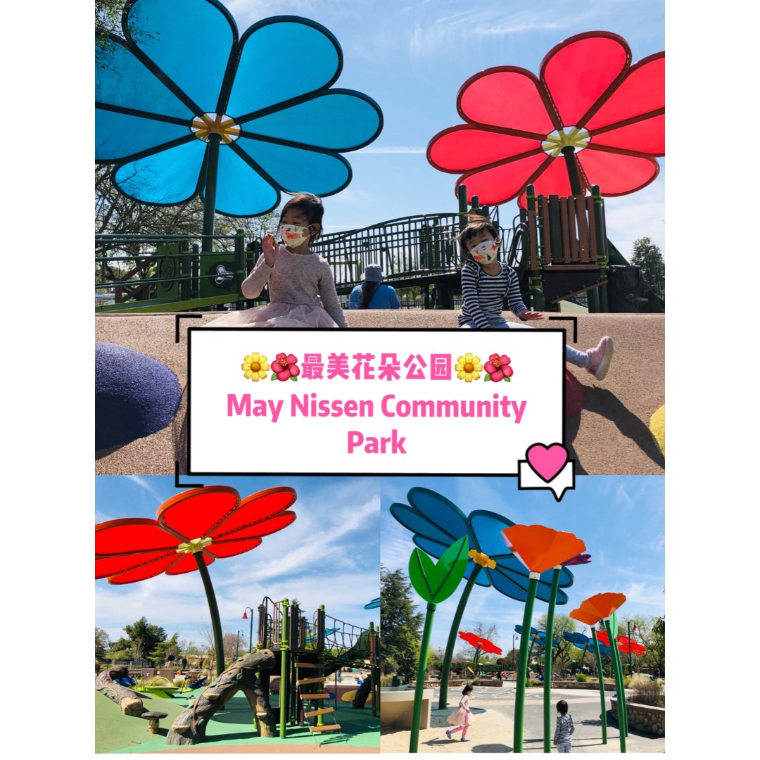 湾区遛娃|最美花朵🌺公园May Niss...