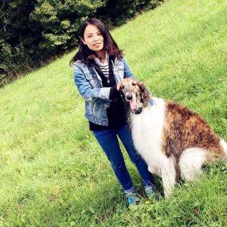 婆婆的大狗和爱马🐎...