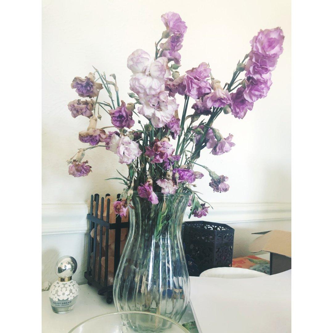 超多花苞的三刀康乃馨花束