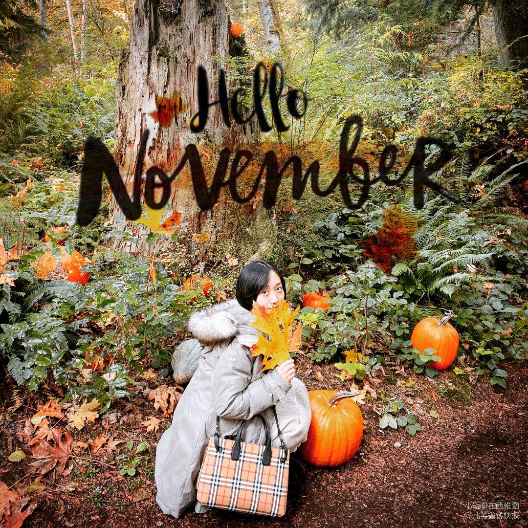 Burberry与秋天真的特别搭