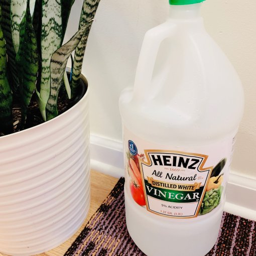居家好物 | 白醋+苏打粉清洁大法1⃣️