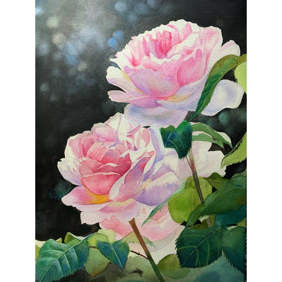 情人节画点不出错的🌹捕捉阳光的玫瑰...