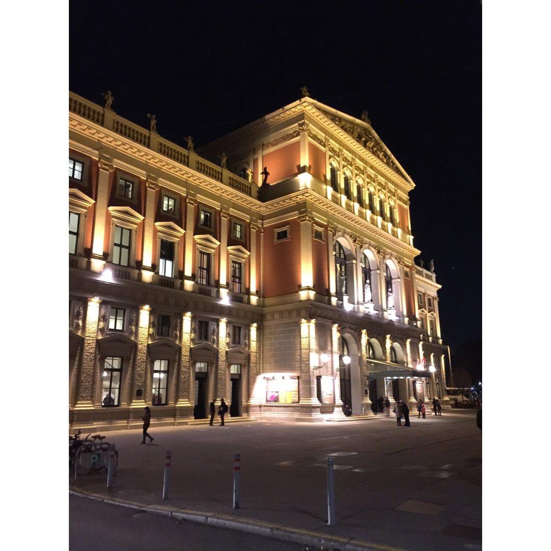 维也纳金色大厅 来感受一下奥地利的艺术~