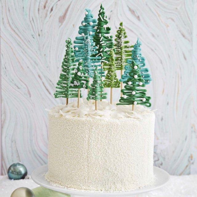 圣诞节蛋糕装饰!