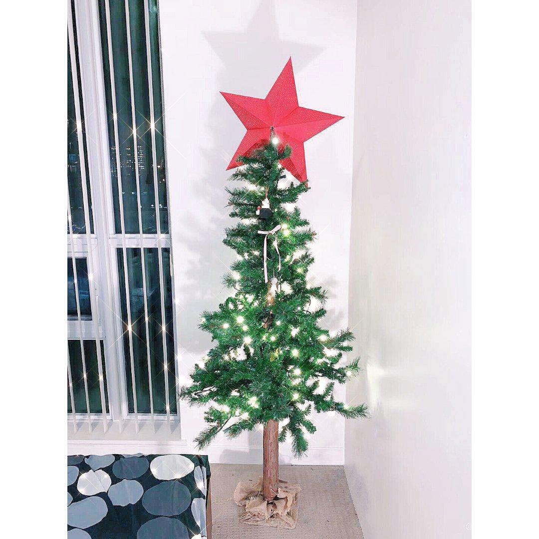 🎄有树干的圣诞树才算有灵魂