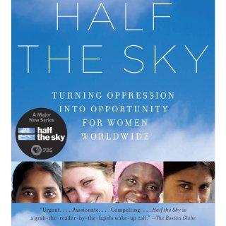 推荐一本书——天空的另一半...