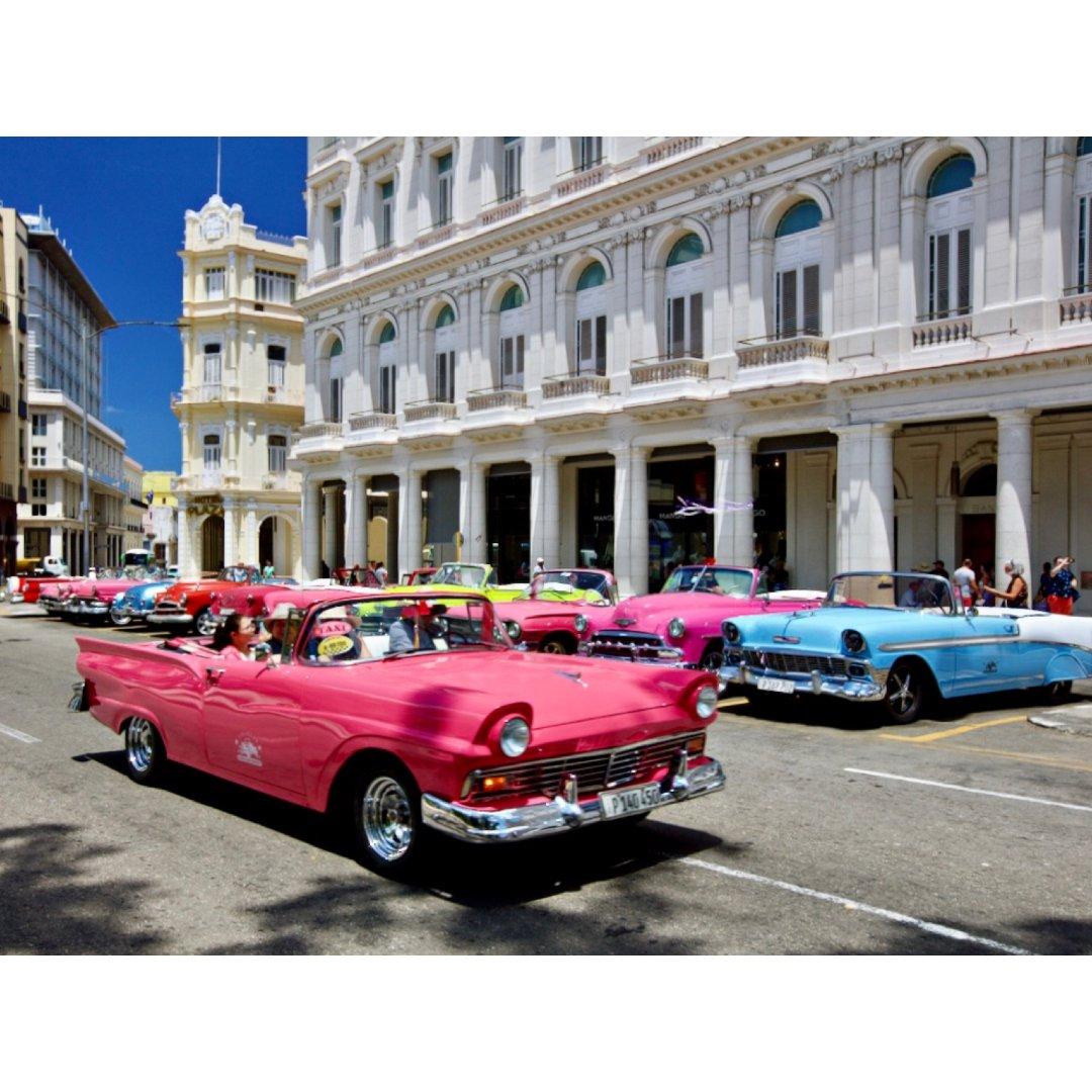 去年此时我在哪,古巴,周杰伦