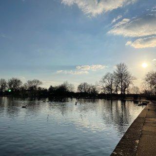 阳光灿烂出来公园里踏踏青~🌱...
