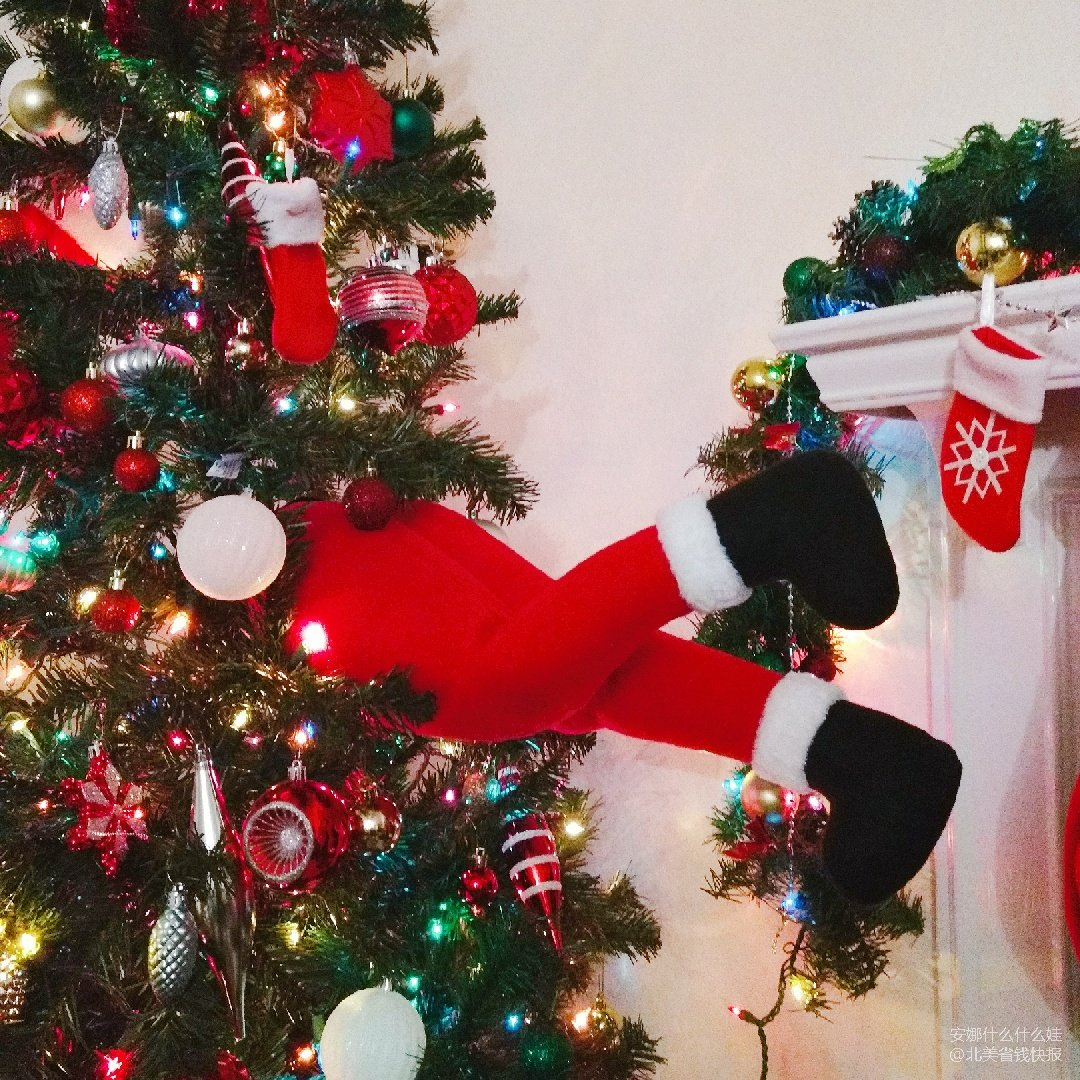 圣诞老人掉进我家的圣诞树里啦!
