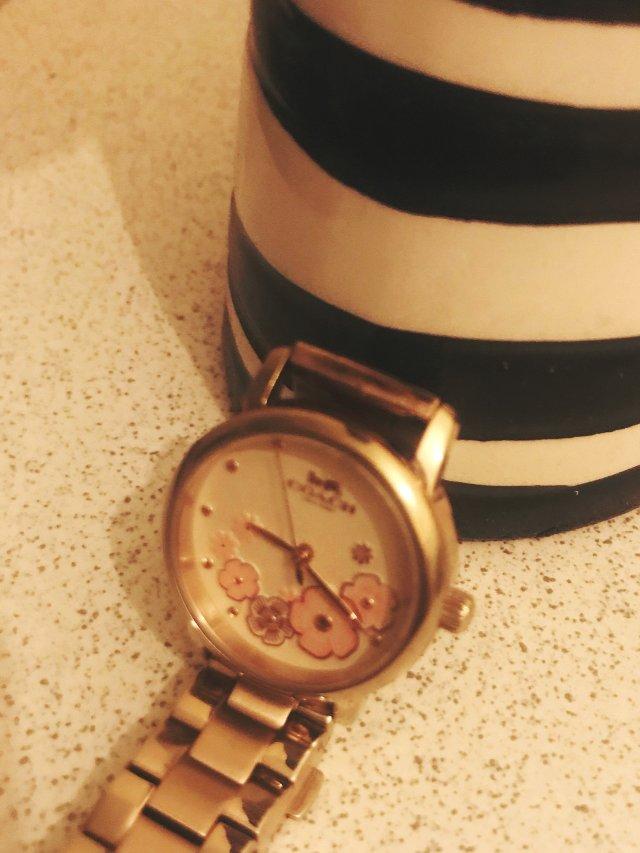 Coach金色花朵🌺手表 爱了爱了