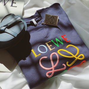 Logo卫衣
