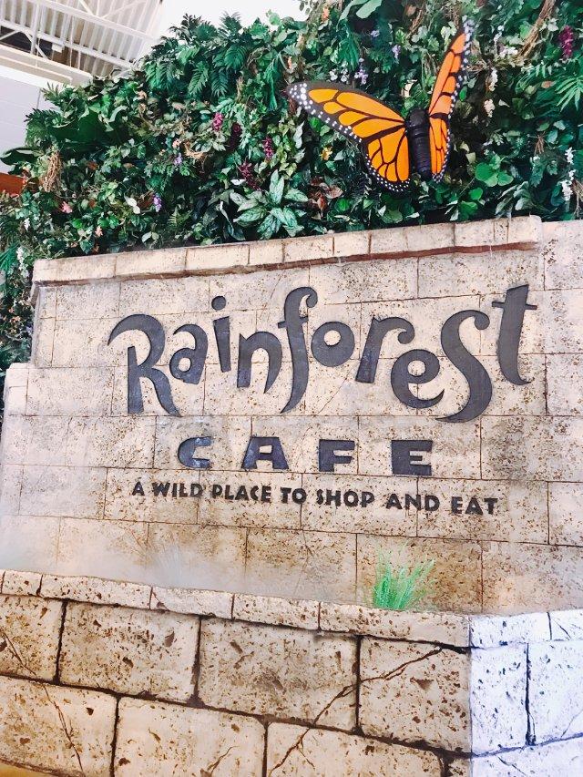 周末好去处!Rainforest ...