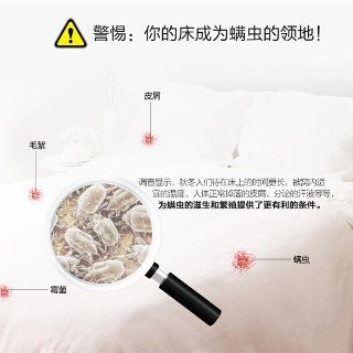 除螨仪测评丨你还在与螨虫同床共枕吗?