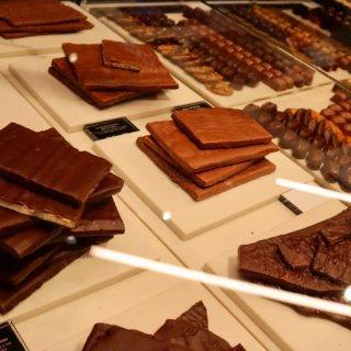 我最爱的猫本巧克力🍫 KOKO BLAC...