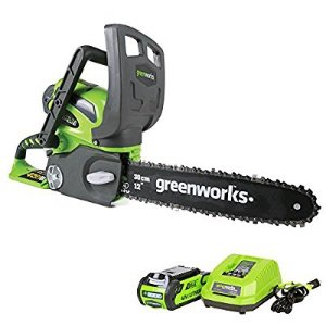 $119Greenworks 12-Inch 40V Cordless Chainsaw, 2.0 AH Battery Included 20262