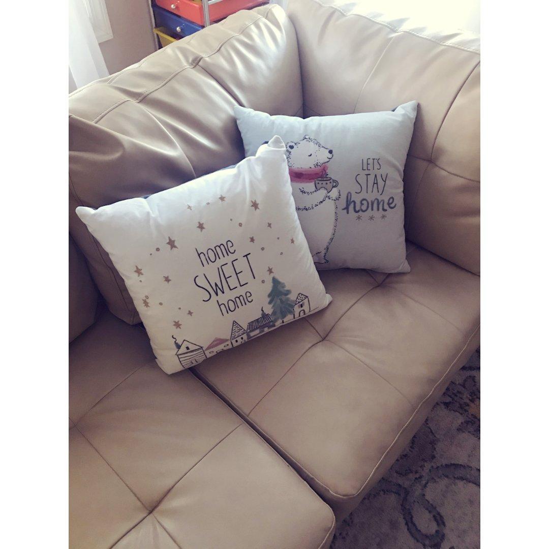沙发🛋️必备物-抱帎