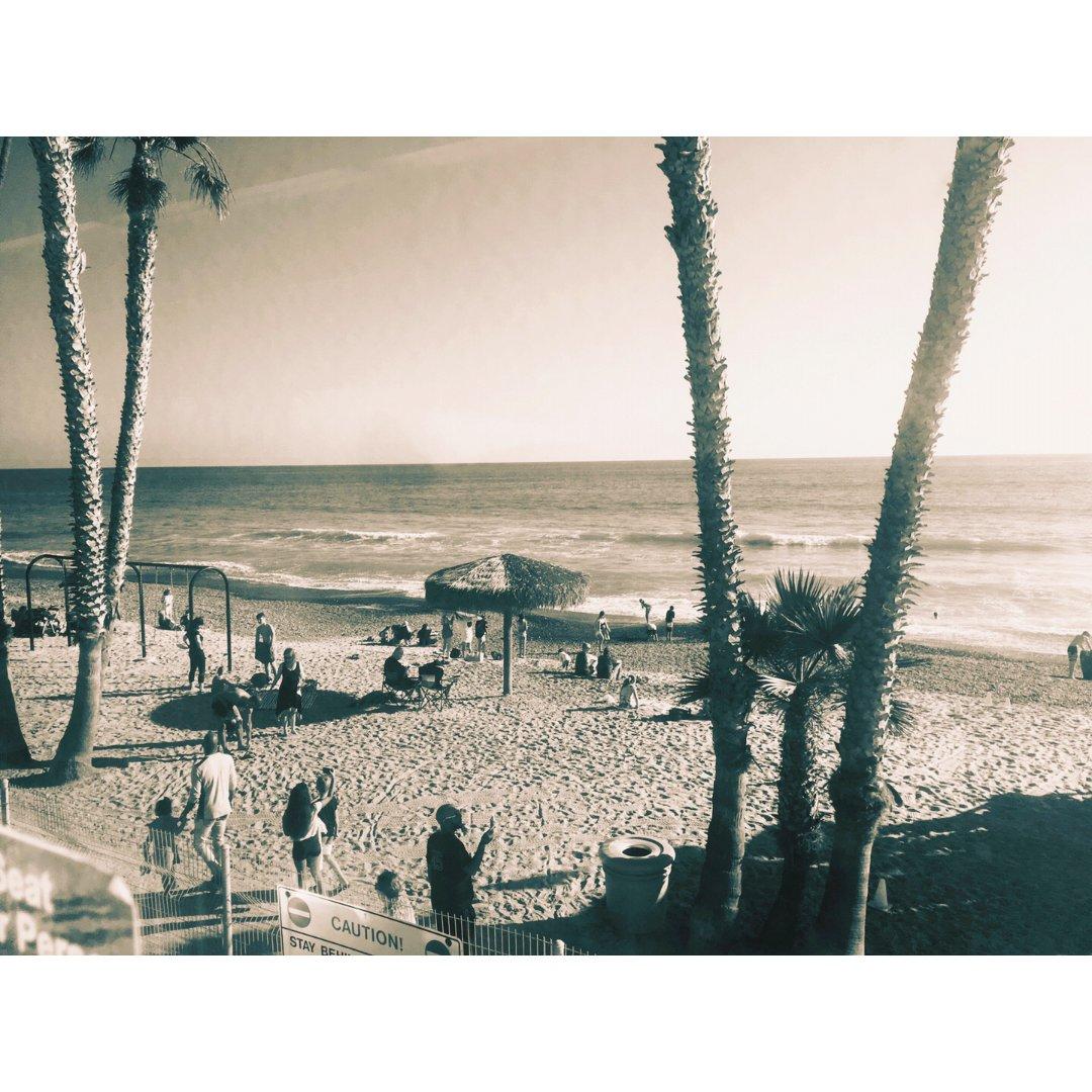 加州梦幻一般的沙滩