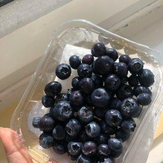 一日一水果~~~🍊 🥭🍉🍓🍊...