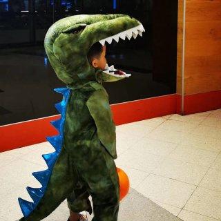风暴兵和t-rex出没在chatswoo...