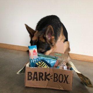 毛孩子也要每月拆快递, Barkbox测评
