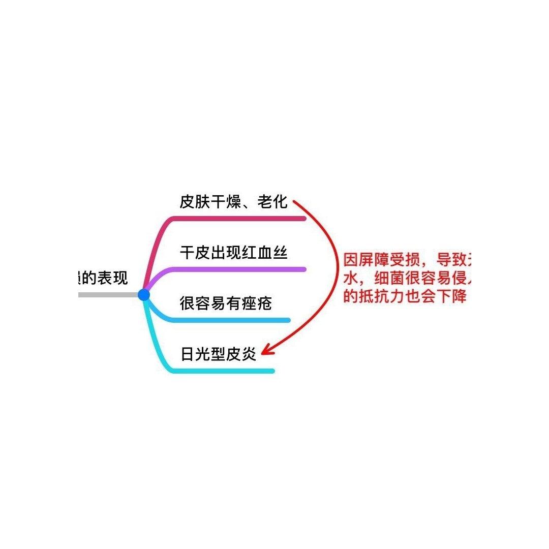 🐰 【修复肌肤屏障】...