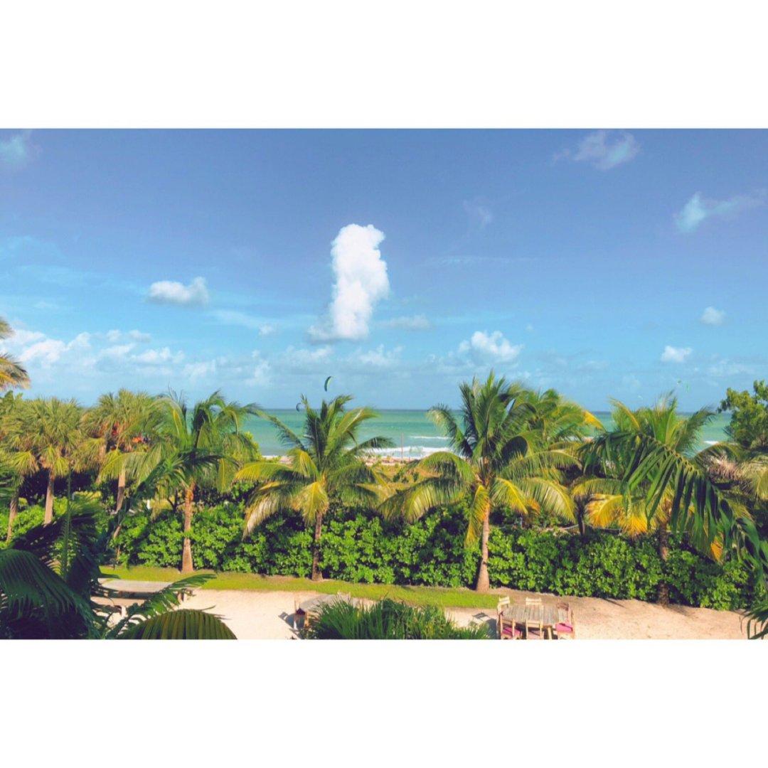 ☀️迈阿密 | 太美了🌴我の旅行篇