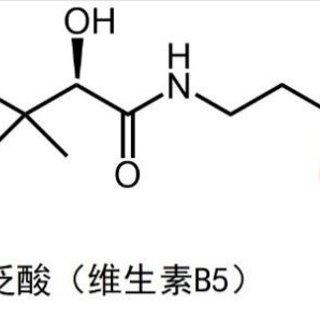 🐰 「成份分析——泛醇(维生素B5)」好...