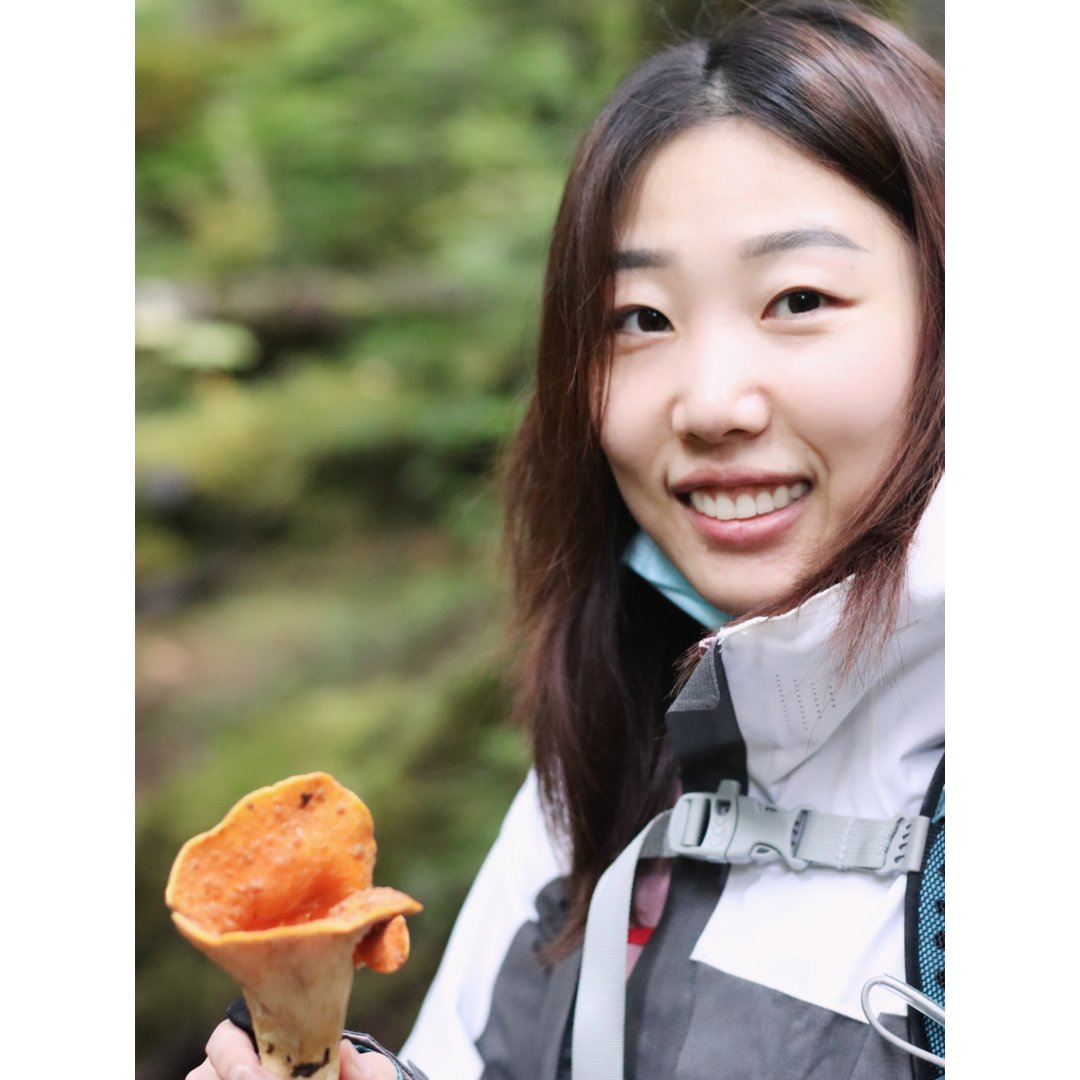 山间的野蘑菇🍄能吃吗❓采蘑菇攻略✨...
