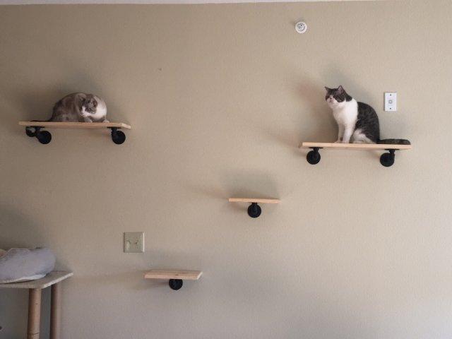 DIY猫爬架