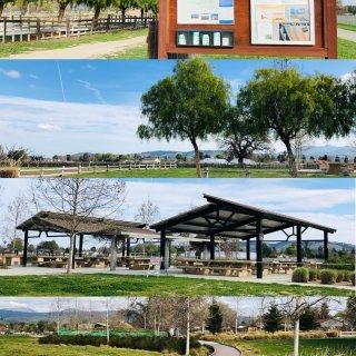 公园内建筑和树木