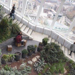 伦敦打卡🇬🇧Sky Garden空中花园...