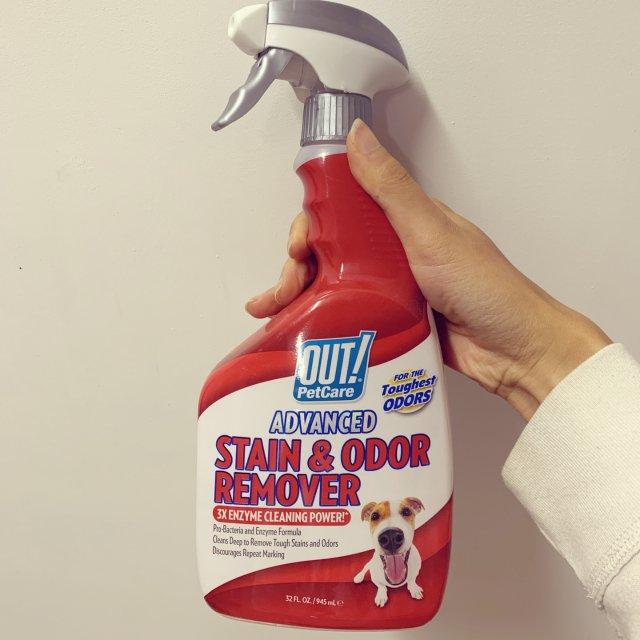养狗清洁必备