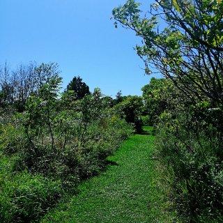 多伦多又一个值得推荐的自然保护区😊...