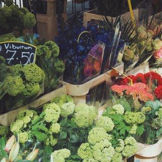 伦敦|去哥伦比亚花市,把春日带回家...
